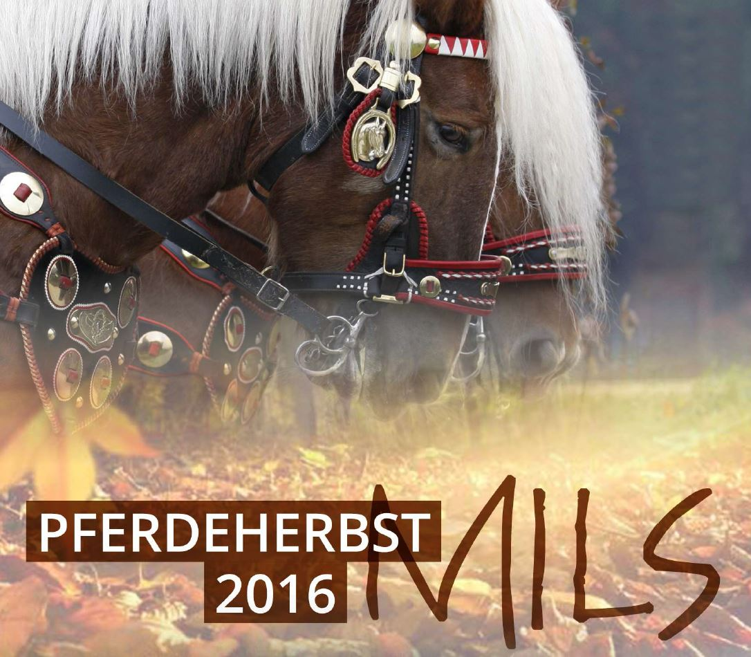 Pferdeherbst - Festumzug - Mils in Tirol